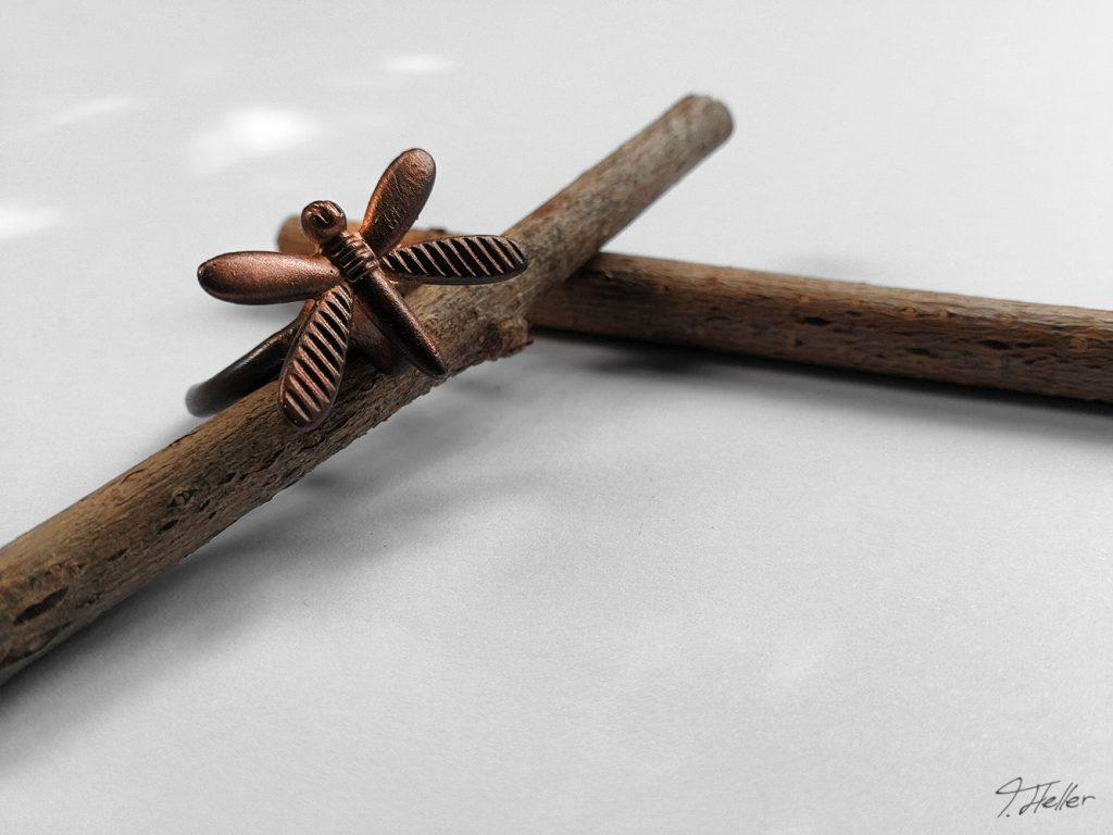 ring schmuck kette guß guss gießen metall wachs bronze silber natur libelle schmuckstück unikat