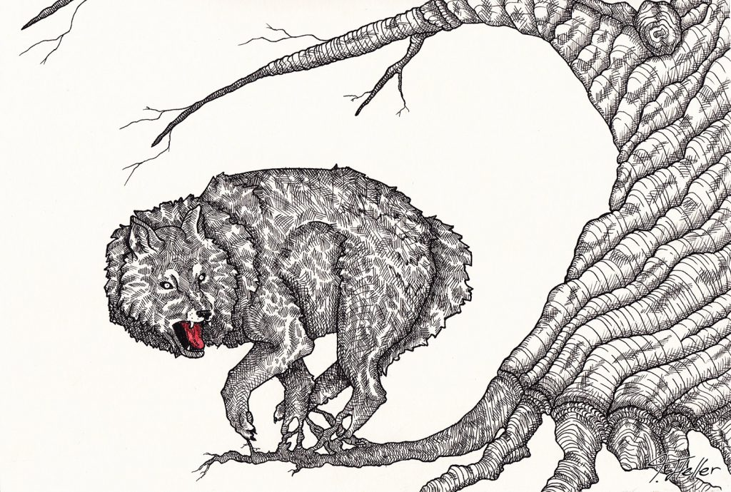 wolf baum schwarz weiß rot tinte fineliner zeichnung analog zweig wurzeln symbiose