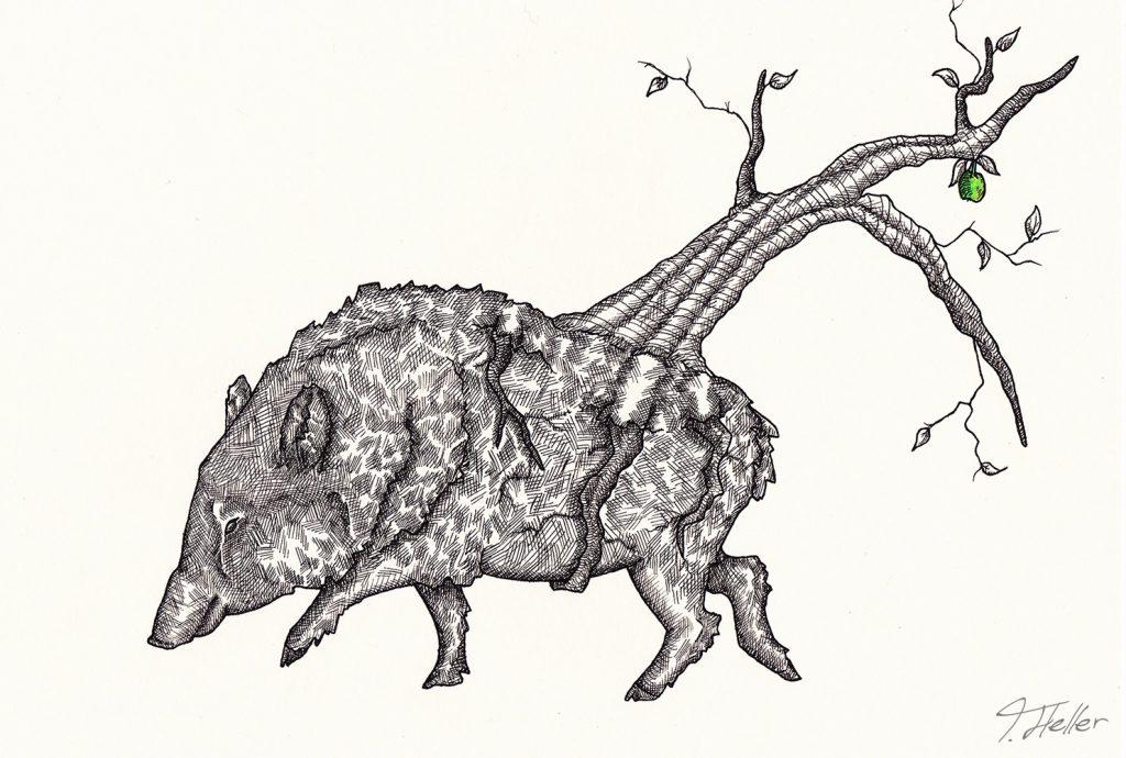 wildschwein baum schwarz weiß grün tinte fineliner zeichnung analog zweig wurzeln symbiose